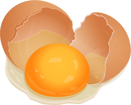 Cracked Egg Adobe Illustrator